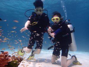 ラチャノイ島 魚と遊ぶ2