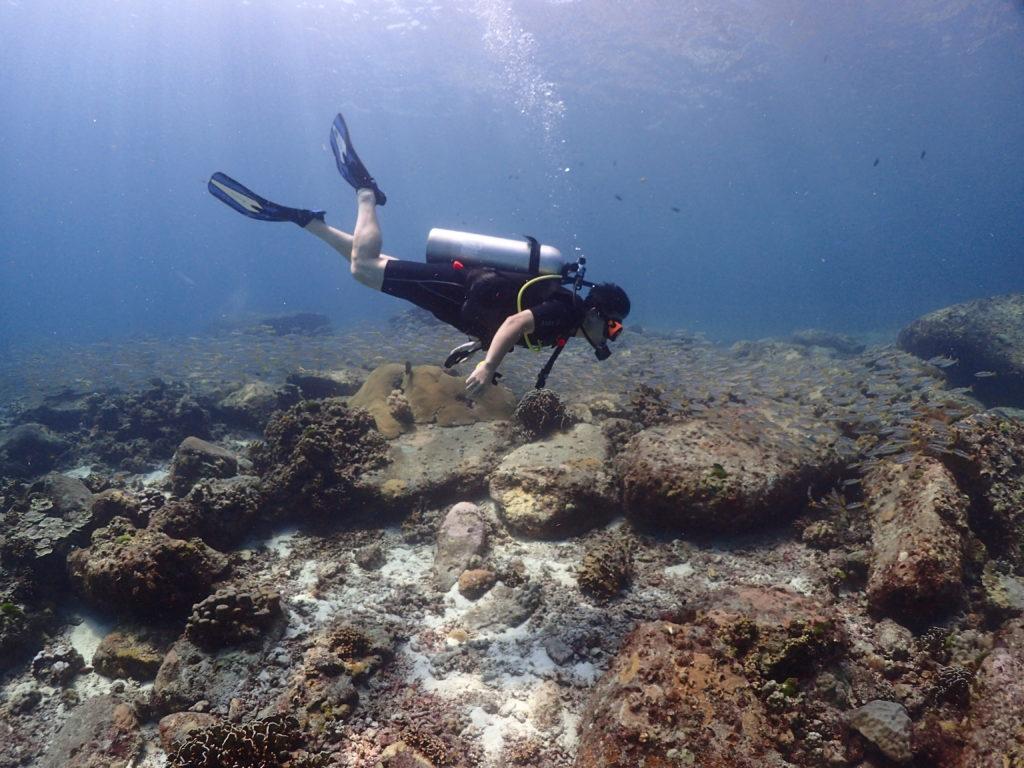 小さい岩の周りに群れる小魚と泳ぐダイバー