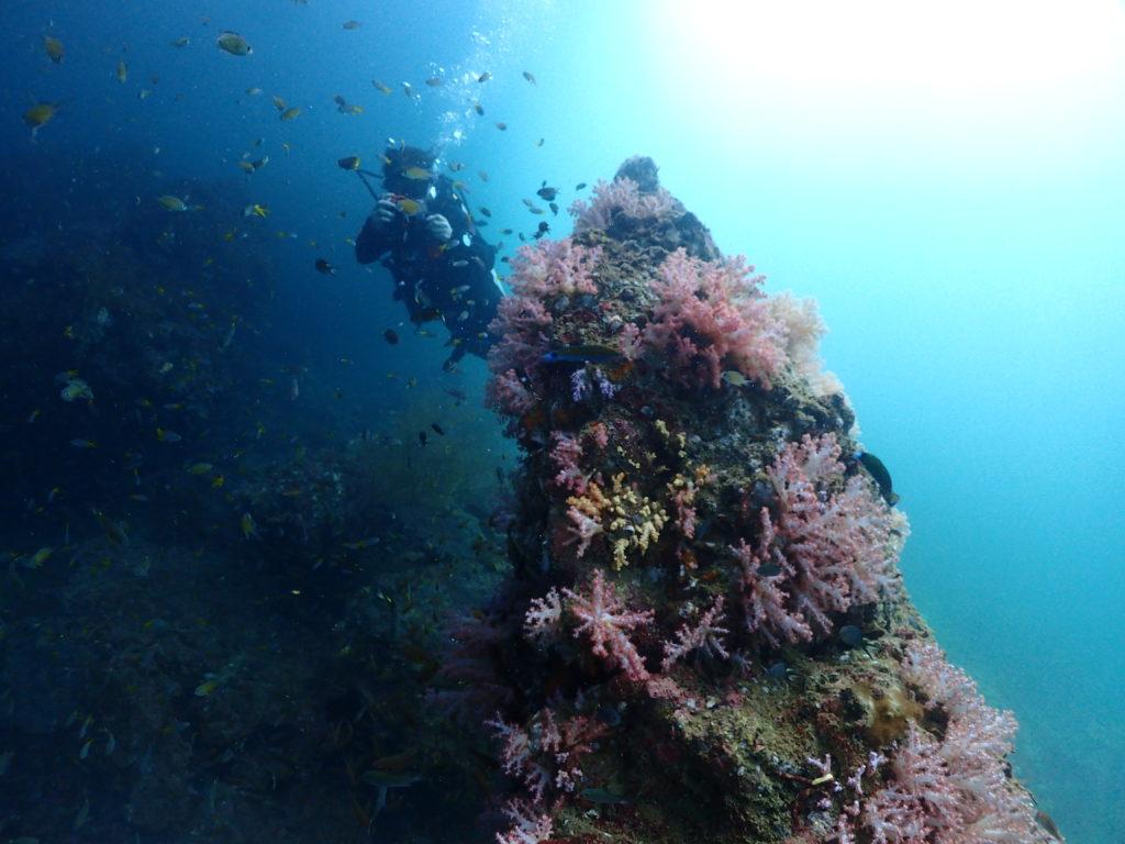 光と陰で幻想的な雰囲気のピピレイ島の水中