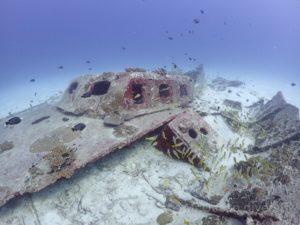 ラチャヤイ島沈船
