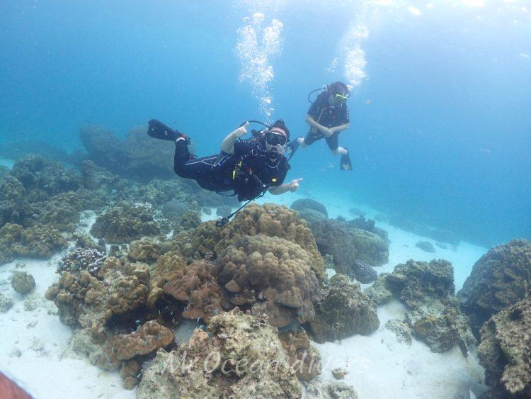 体験ダイビングの浅瀬
