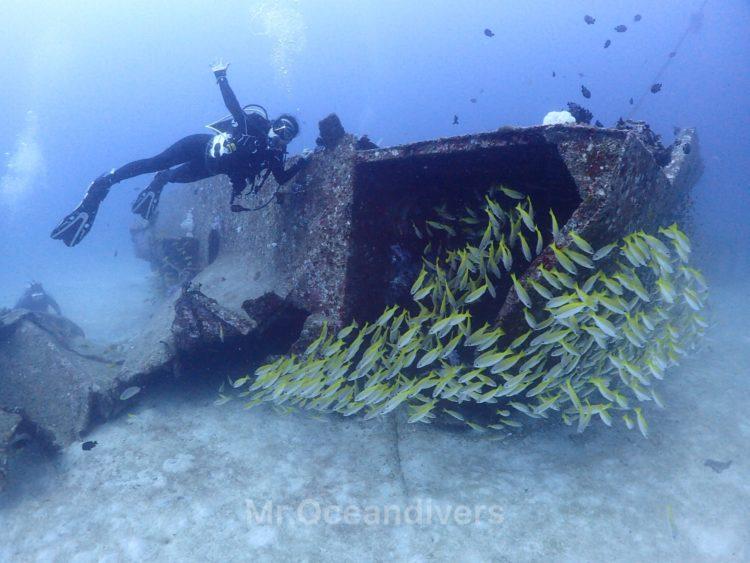 ラチャヤイ島 沈船