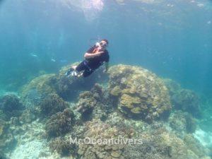 ラチャノイ島 バナナベイ 体験ダイビング