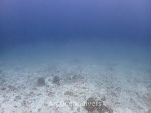 ラチャノイ島 サーモクライン