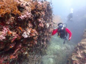 プーケットでダイビング ピピ島ビダノックの景観