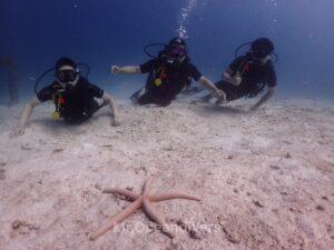プーケットでダイビング ラチャヤイ島で体験ダイビング