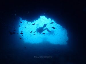 マリンパークでダイビング 洞窟