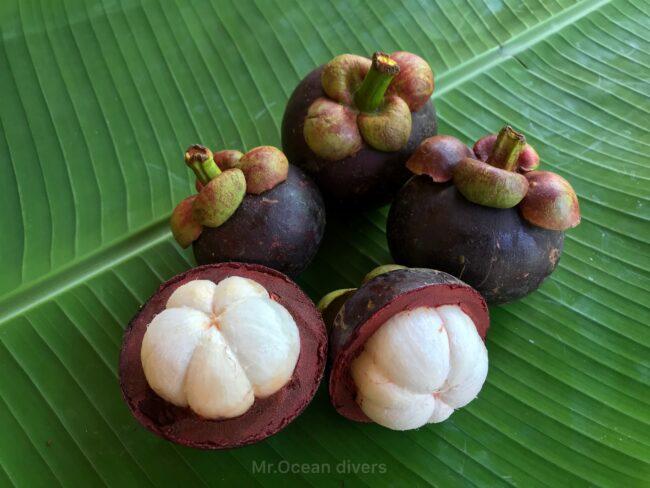 雨季のプーケット 南国フルーツのマンゴスチン